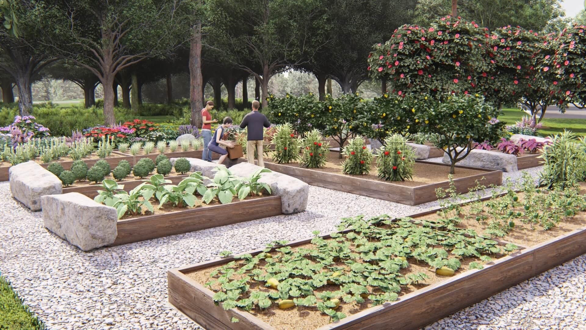 Anthem Community Garden Rendering