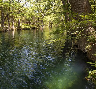 Blue Hole Regional Park in Wimberley Texas Photo